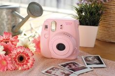 Amazon.com: Fujifilm Instax Mini 8 instantánea cámara de cine (Rosa): Polaroid Cámara: Cámara y foto