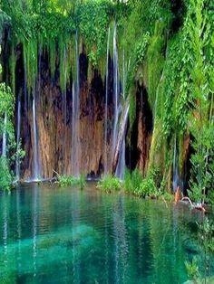 Collection of Stunning Photography !!! - Garajonay National Park, Spain