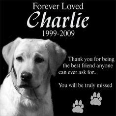 "Personalized Pet Dog Cat Memorial 12""x12"" Engraved Black Granite Grave Marker Head Stone Plaque CHA1"