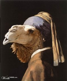 OMG!!!! Camel with a Pearl Earring!!!!