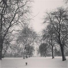 Regents Park in the snow