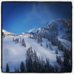 My little slice of #heaven #vacay #snowbird #powpow #allday