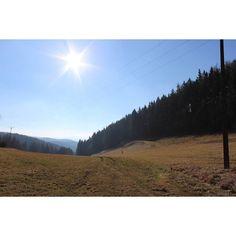 winter 2014  #kudowazdroj #hillside #sun #forest #goodweather #landscape #freshair #outofthecity #tbt #bluesky #sunnyday #nosnow #sunnybutcold #photoofthatday #nofilter #nicetrip