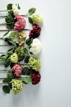 Hortênsias verdes, rosas, granates y blancas