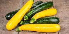 Easy Zucchini Casserole – Cheesy, Low Carb, Keto and Delicious! – Ketogenic Woman Easy Zucchini Casserole – Cheesy, Low Carb, Keto and Delicious! Eggplant Zucchini, Yellow Squash And Zucchini, Roasted Zucchini And Squash, Roast Zucchini, Zucchini Quiche, Zucchini Casserole, Casserole Recipes, List Of Vegetables, Tips