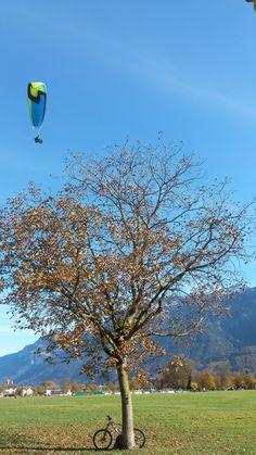 Paragliding Interlaken in autumn. Just amazing!