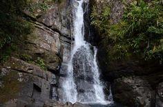 El Yunque Rainforest Nature Walk and Bioluminescent Bay Kayaking Combo Tour - TripAdvisor