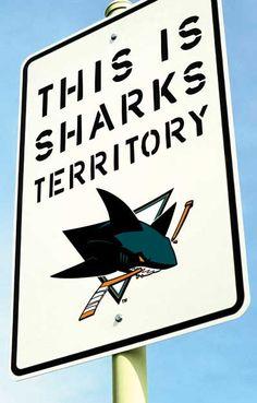 Sharks Territory