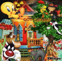 Halloween Sylvester And Tweety Bird