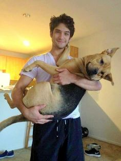 – Dog - Famous Last Words Tyler Posey Teen Wolf, Wolf Tyler, Scott And Stiles, Teen Wolf Scott, Teen Wolf Quotes, Teen Wolf Funny, Teen Wolf Poster, Cute Baby Boy Names, Dylan Obrian
