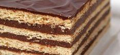 Tarta rápida de galletas maría. Recetas para niños Cheesecake, Flan, Vanilla Cake, Tiramisu, Biscuits, Cooking, Healthy, Ethnic Recipes, Desserts