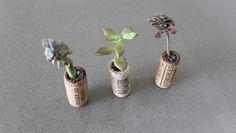 Ingenious Wine Cork Planters For Your Little Plants Recycled Wine Corks, Wine Cork Crafts, Little Plants, Planting Succulents, At Least, Recycling, Things To Come, Creative, How To Make