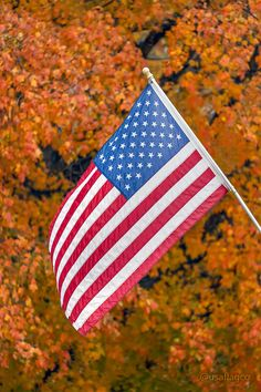 399de7c48132 Beautiful Autumn View of an American Flag by USA Flag Co.
