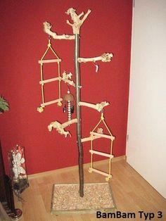 Diy Parrot Toys, Diy Bird Toys, Big Bird Cage, Bird Cages, Cockatiel Toys, Homemade Bird Toys, Parrot Stand, Parrot Perch, Bird Aviary