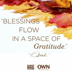 Blessings flow in a space of gratitude Attitude Of Gratitude, Inspirational Thoughts, Positive Thoughts, Happy Sunday Quotes, Super Soul Sunday, Oprah Winfrey Network, Special Words, Own Quotes