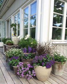 64 stunning front yard cottage garden inspiration ideas - Garden Care, Garden Design and Gardening Supplies