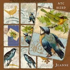 Vintage Songbird Digital Collage Sheet ATC by AudreyJeanneRoberts, $4.95