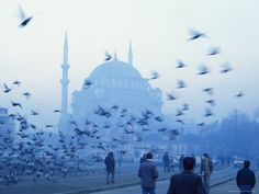 Istanbul, The Blue Mosque. In the summer of 2000 I spent 3 weeks about 100 miles south in a prefab housing camp helping with earthquake relief.