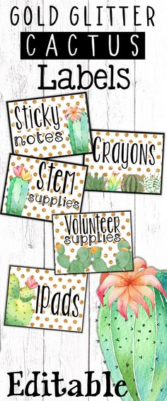 Cactus and succulent classroom decor supply labels, editable