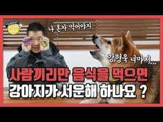 [Eng sub] do dogs feel left out if people eat without them?|Hunter Kang's Q&A Feeling Left Out, People Eating, Feelings, Dogs, Pet Dogs, Doggies