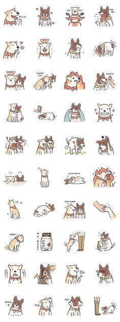 Httpglutatumblrcom GLUTA Pinterest - Meet gluta the smiling dog that beat cancer