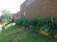 Woodsdale Elementary   The community garden at Woodsdale Elementary in Wheeling.