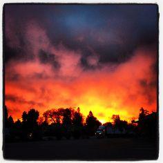 Dawn in Novato, Ca