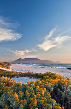 View of Table Mountain from Bloubergstrand Africa Travel Destinations Beautiful Landscape Photography, Beautiful Landscapes, Cape Town Photography, Table Mountain Cape Town, Places To Travel, Places To Go, Travel Destinations, Namibia, Cape Town South Africa