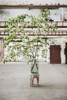 Kinfolk Melbourne and Katie Marx Flowers