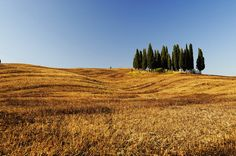 In Val d'Orcia con Photoexperience