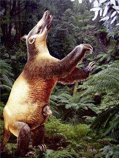 extinct mammals (marsupial)