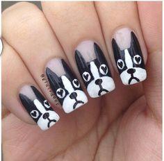 Boston terrier nails !!! Omg