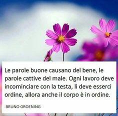 http://www.bruno-groening.org/italiano/