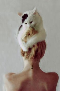 I don't care about the tattoo I just love how cute the cat is on her head!