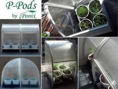 The P-Pods are versatile mini-greenhouses that take up less than 3 square feet of space and allow you to grow plants year-round, regardless of your local climate! http://kck.st/174Mugc