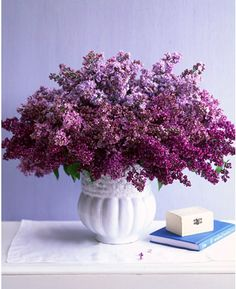 one of my all time favourites, lilacs. when i was young,i would clean my room wash the bedclothes ,open the windiw before i went to bed and slept in peace.