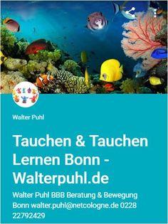 ❤💛💚💙💜💗 WALTER PUHL - TAUCHEN & TAUCHEN LERNEN - BONN BERATUNG  - TRAINING -  BETREUUNG - BEGLEITUNG -  UNTERSTÜTZUNG  http://sites.google.com/view/walter-puhl-tauchen-bonn?utm_content=buffer42c44&utm_medium=social&utm_source=pinterest.com&utm_campaign=buffer #walterpuhlbonn #walterpuhl #bonn #nrw #beratungbonn #bewegungbonn #sportbonn #fitnessbonn #vereinbonn #netteleutebonn #unterwasserbonn #dive4lifebonn #tauchenbonn #tauchenlernenbonn #padibonn #ssibonn  #tauchlehrerbonn…