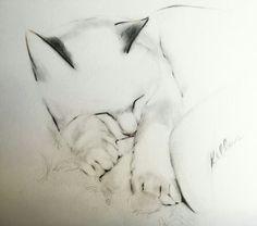 #Cat #Drawing #Resting #Cute #Art