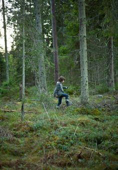 fine little day.. would love to be trudging through woods right now : )