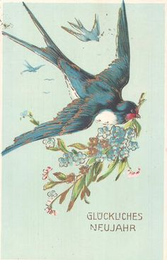 Community Post: 20 Reasons Nature Loves You Vintage Greeting Cards, Vintage Ephemera, Vintage Postcards, Vintage Pictures, Vintage Images, Bird Art, Beautiful Birds, Vintage Prints, Blue Bird
