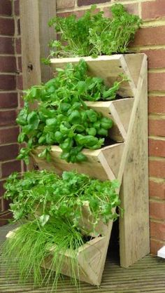 Beautiful herb garden for saving space, or keeping close to the kitchen door!