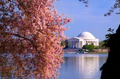 Jefferson Memorial seen from the walkway on Tidal Basin. Washington D.C.