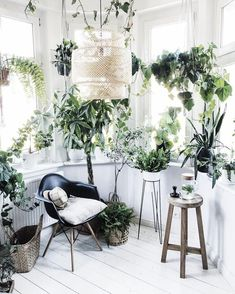 Polish design studio Bujnie specialises in minimalist, design-led plant holders and plant stands for those who love bringing nature into their homes. Bathroom Without Windows, Morrocan Decor, Moroccan, Jungle Bedroom, Room With Plants, House Plants, Minimal Home, Bathroom Plants, Cool Plants
