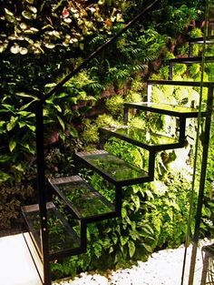 A glass staircase and living wall in Patrick Veillets Paris studio. Designed by Vertical Gardens Patrick Blanc. Stairway To Heaven, Outdoor Spaces, Outdoor Living, Indoor Living Wall, Indoor Outdoor, Glass Stairs, Metal Stairs, Glass Handrail, Painted Stairs