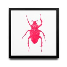 Oh Hey Beetle in Pink