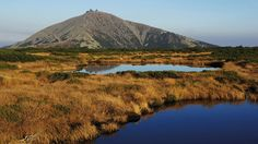 Veto pro národní parky! Vyzvěte poslance a poslankyně, aby jej přehlasovali! Snad naposled!