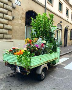 Car in bloom