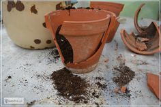 Reassembling the clay pot for the fairy garden