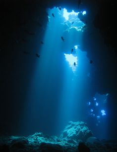 Diving First Cathedral off of Lanai, Hawaii