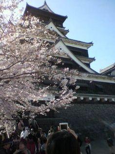 Kumamoto castle http://en.wikipedia.org/wiki/Kumamoto_Castle